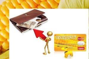 Условия получения карты Кукуруза